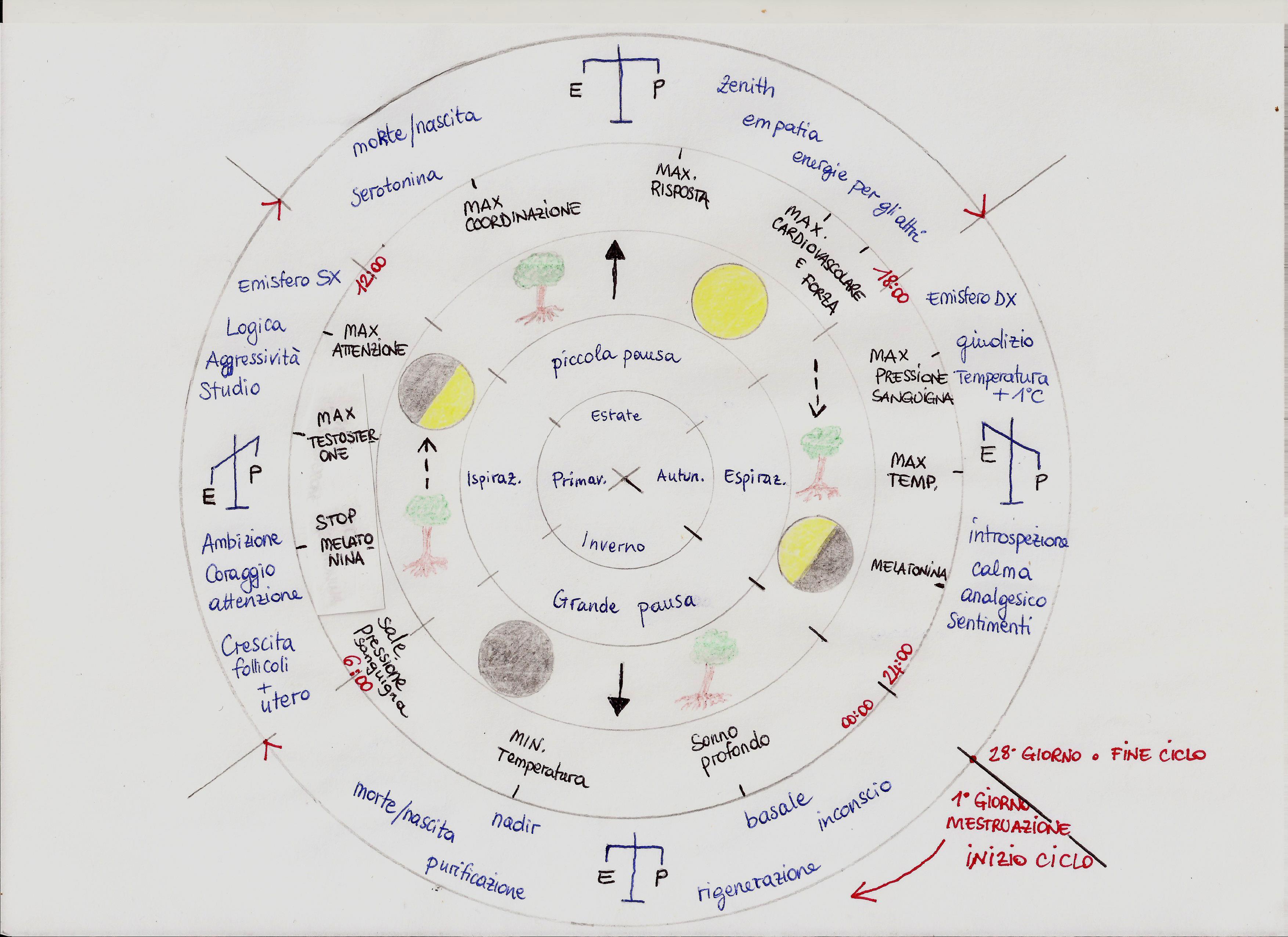 Il ciclo specchiato nella natura