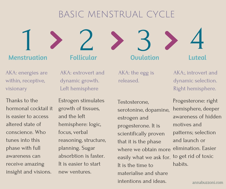 BASIC MENSTRUAL CYCLE